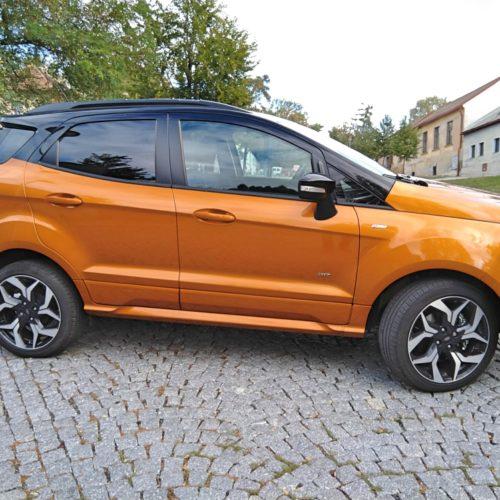 Ford EcoSport bok
