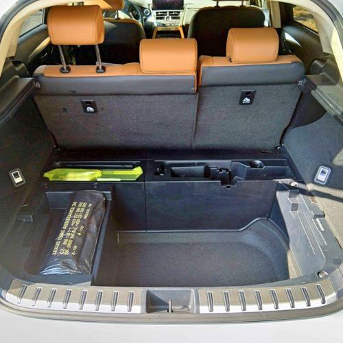 Lexus NX300h_15