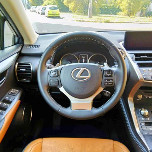 Lexus NX300h_24