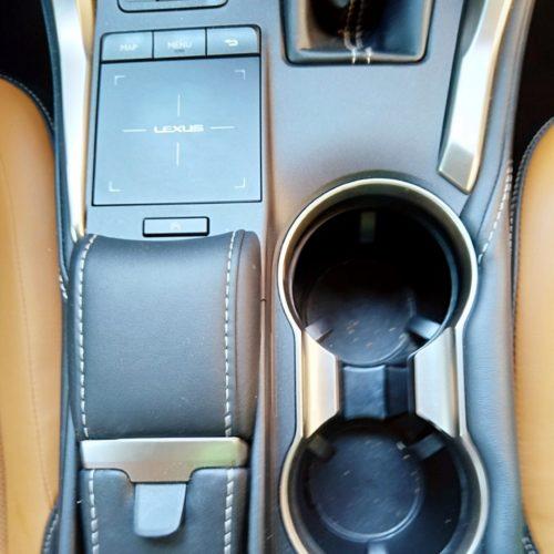 Lexus NX300h_29