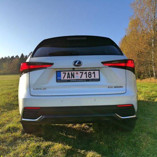 Lexus NX 300h_15