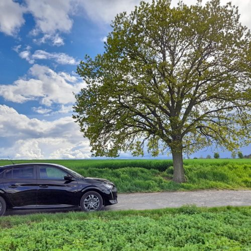 Peugeot 208_5