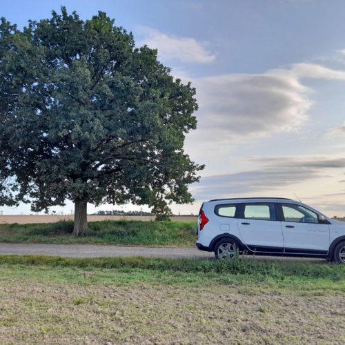 Dacia Lodgy_16